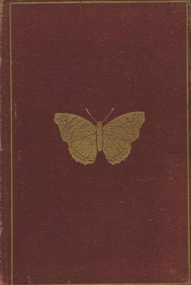 Image for Butterflies and Moths (British)